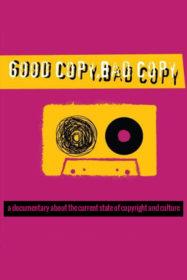 Обложка фильма «Хорошая копия плохая копия»