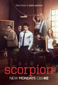 Обложка фильма «Скорпион»