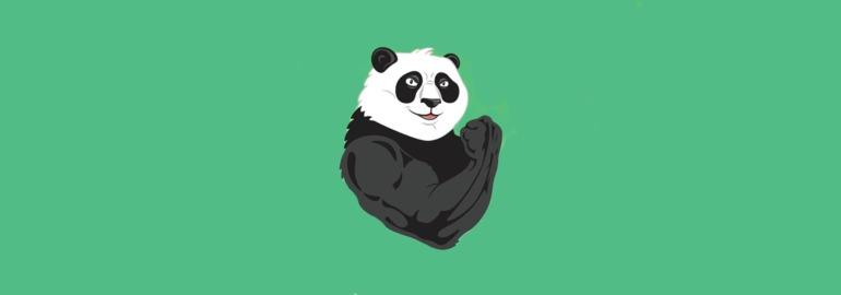 Иллюстрация: Panda-Meetup #6