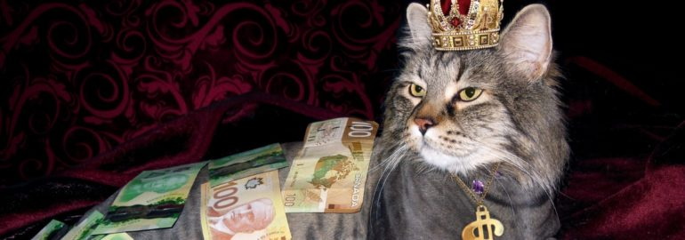 ФРИИ: россияне могут зарабатывать на продаже своих данных до 60 тысяч рублей в год