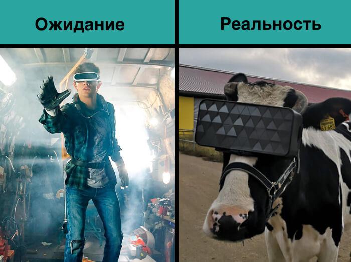 Мем про корову в VR-очках
