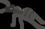 Обложка статьи «Как муравьи решают проблемы коммивояжёров»